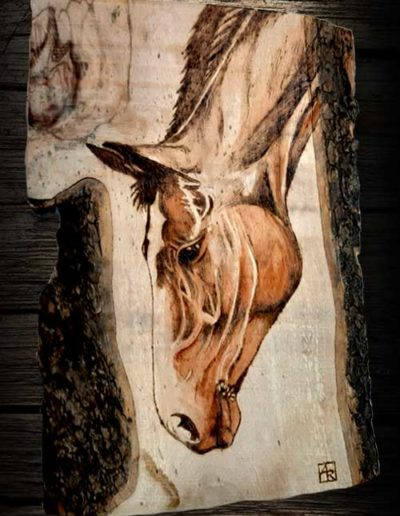 Testa di cavallo inciso a pirografo su legno di olivo