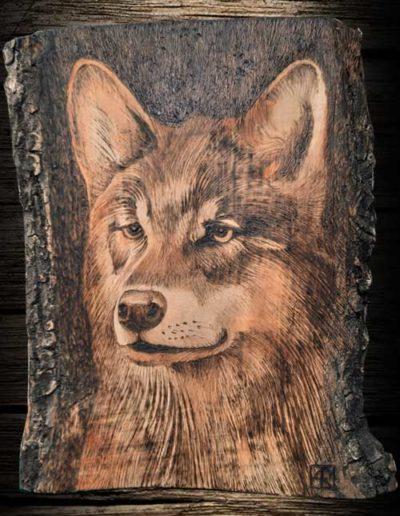 Lupo inciso a pirografo su legno di olivo