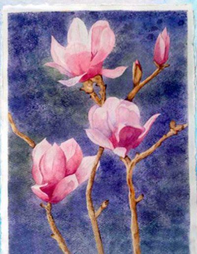 Dipinto ad acquerello eseguito da allievi, raffigurante dei fiori rosa.